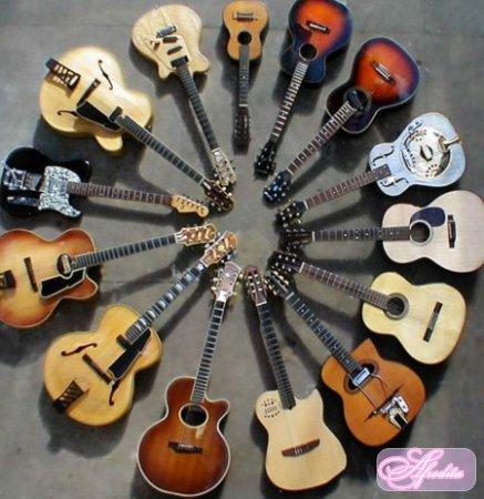 Какие критерии важны при выборе гитары новичку?